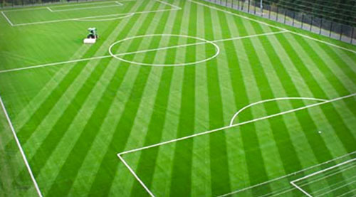 football pitch3